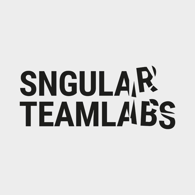 Sngular TeamLabs